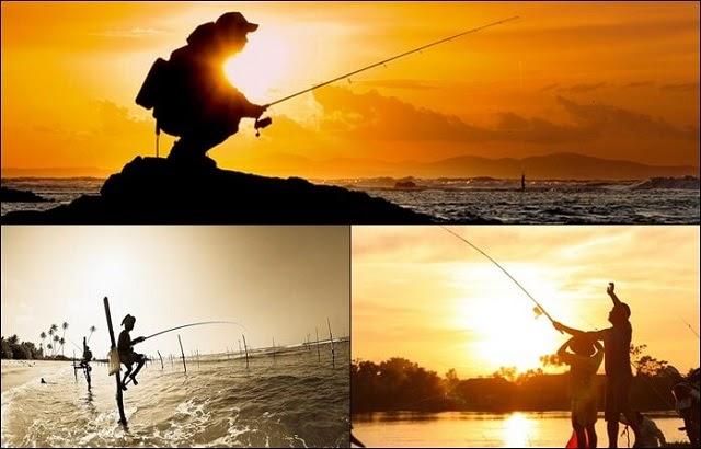 Mơ thấy câu được nhiều cá (Nguồn: kuviet.com)